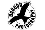 barcud photography
