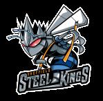 steel stings